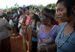 Organizações apuram violações de Direitos Humanos dos Guarani e Kaiowá