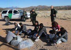 """Migrantes:  """"Movimiento de Santuario"""" conta mais de 800 núcleos"""