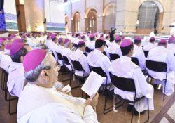 'Iniciação Cristã' será tema central da 55ª Assembleia Geral da CNBB