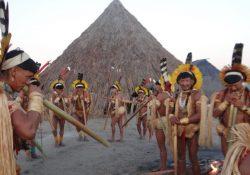 Vicente Cañas, mártir da causa indígena