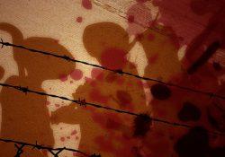 CPT: assassinatos no campo aumentaram em 30,5%