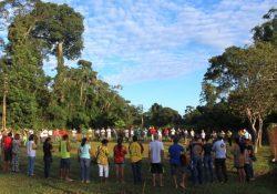 Uma Ecoteologia iluminada pela Laudato sì a partir da Amazônia