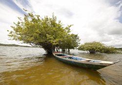 Representantes da Rede Eclesial Pan-Amazônica se encontram em Santarém (PA)