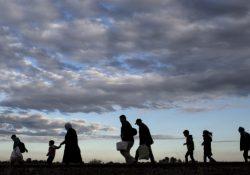 Criado portal com dados da migração mundial