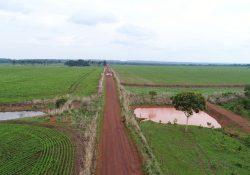 Veneno: Liminar suspende atividade agrícola em fazenda de Tocantins