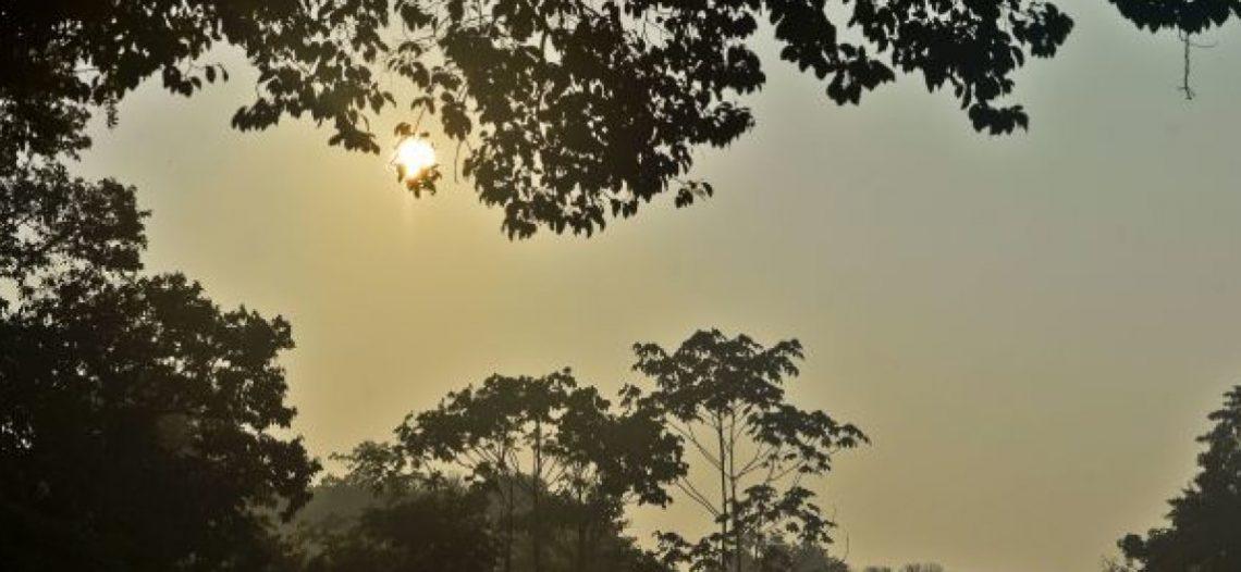 Tanta violência na Amazônia, mas a Vida, Dom de Deus, é mais forte!