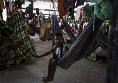 A busca por sobrevivência dos imigrantes venezuelanos