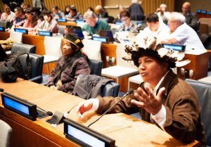Adriano Karipuna e Leila Guarani e Kaiowá durante sessão do Fórum Permanente. Foto Ryan Kautz/Witness