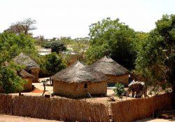 A África em miniatura: a riqueza cultural dos Camarões