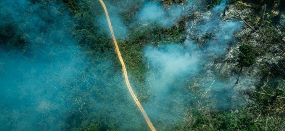 Organizações ambientalistas e camponesas manifestam sua posição sobre o PL da grilagem