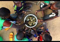 ONU: fome pode afetar quase 67 milhões de pessoas na América Latina e Caribe em 2030